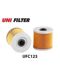 UFC123